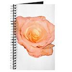 Peach Rose Journal