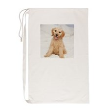 Labradoodle puppy on bed Laundry Bag