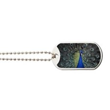 Peacock Dog Tags