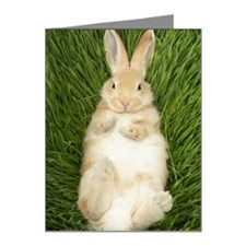 Rabbit laying in grass Note Cards (Pk of 20)