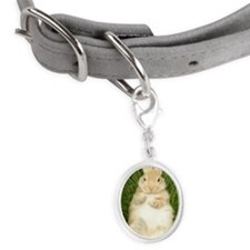 Rabbit laying in grass Small Oval Pet Tag