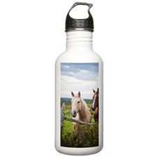 Two horses stand near  Sports Water Bottle