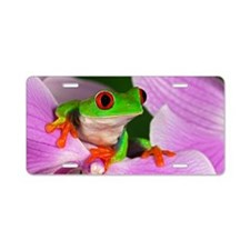 Red-eyed tree frog on flowe Aluminum License Plate