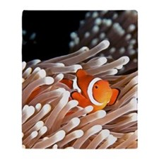 A clownfish hiding in an anemone Throw Blanket