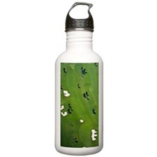 Aerial view of a golf  Water Bottle