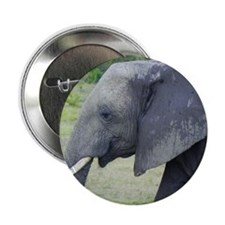 "juvenile mara elephant kenya collecti 2.25"" Button"