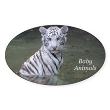 Baby Animals Decal