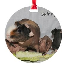 Skinny Pigs Ornament