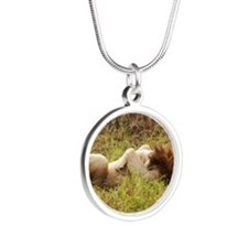 mara lion napping kenya coll Silver Round Necklace