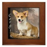 Pembroke Welsh Corgi Puppy Framed Tile