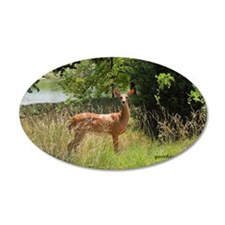 Beautiful doe Wall Decal
