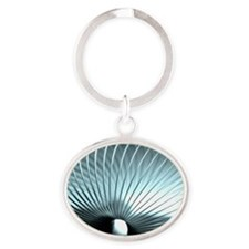 Slinky toy Oval Keychain