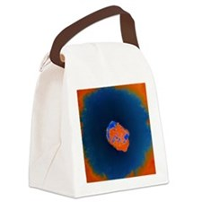 Smallpox virus Canvas Lunch Bag