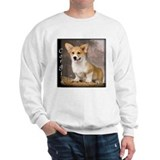 Pembroke Welsh Corgi Puppy Sweater