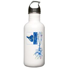 Artwork of a nerve cel Water Bottle