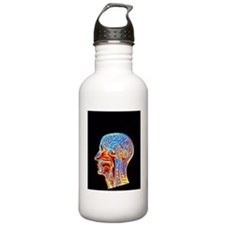 Coloured MRI scan of t Water Bottle
