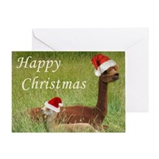 Mother and Baby Christmas Greeting Card