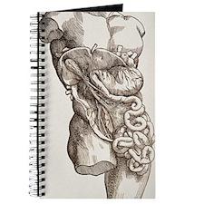 n2750021 Journal