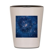 Dark matter ring in galaxy cluster Shot Glass