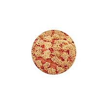 p6160502 Mini Button