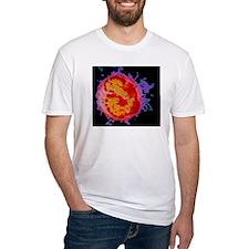 p2480060 Shirt