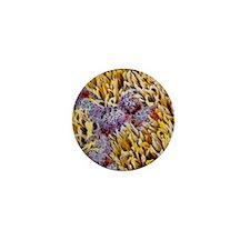 p6160112 Mini Button
