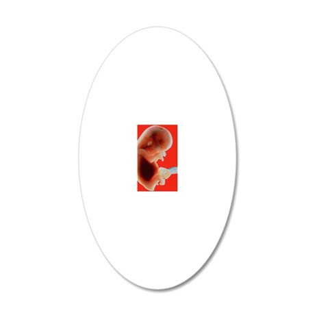 p6800294 20x12 Oval Wall Decal