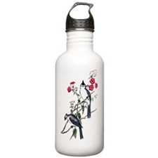 bct_ipad Water Bottle