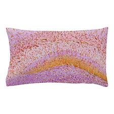 Hippocampus brain tissue Pillow Case