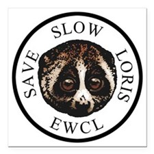 "slow loris circular logo Square Car Magnet 3"" x 3"""