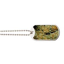 Cannabis Dog Tags
