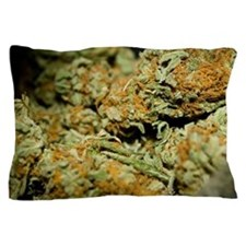 Cannabis Pillow Case