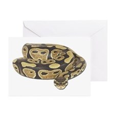 Ball Python Photo Greeting Cards (Pk of 10)