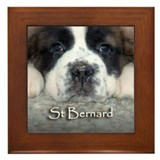 Baby Saint Framed Tile