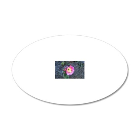 pink hybrid 20x12 Oval Wall Decal
