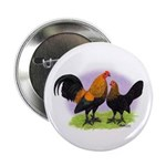 Brown Red OE Bantams Button