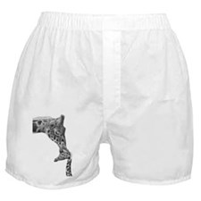 Giraffe and Calf Serving Tray Boxer Shorts