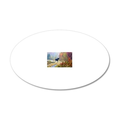 662_h_f  pic frame (1) 20x12 Oval Wall Decal