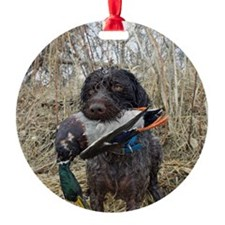 German wirehaired pointer calendar Ornament