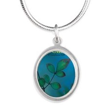 Ambassadors for Christ Silver Oval Necklace
