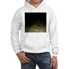 Sea Oats And Spirit Orbs Hoodie