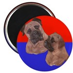 Bull Mastiff Mom & Puppy 2.25