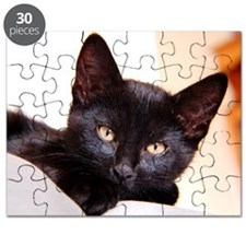 Spook the Kitten Puzzle