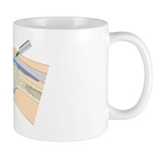 Cross section biomedical illustration o Mug