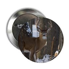 "Trophy Whitetail D1316-014 2.25"" Button"