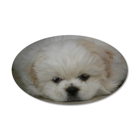 Pekingese Puppy 35x21 Oval Wall Decal