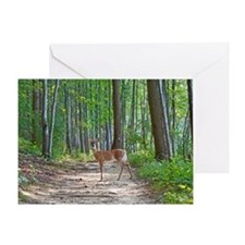 Doe in forest Greeting Card