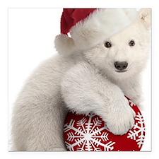 "Polar Bear Cub Christmas Square Car Magnet 3"" x 3"""