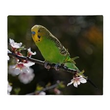 Budgie perching on cherry branch. Throw Blanket
