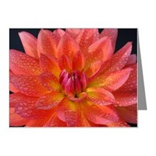 Close up of center of orange Note Cards (Pk of 10)